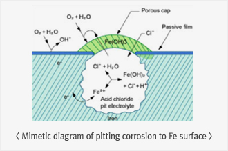 Mimetic diagram of pitting corrosion to Fe surface